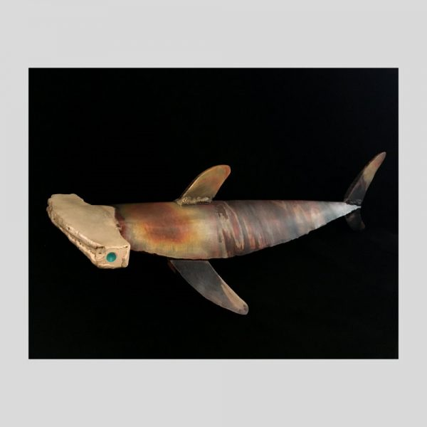 Hammerhead Shark bz Jorge España